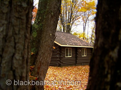 Black Bear Cabin Slideshow